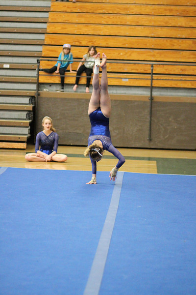 2014_03_27 Gymnastics LCC vs Westview Web 0040.JPG