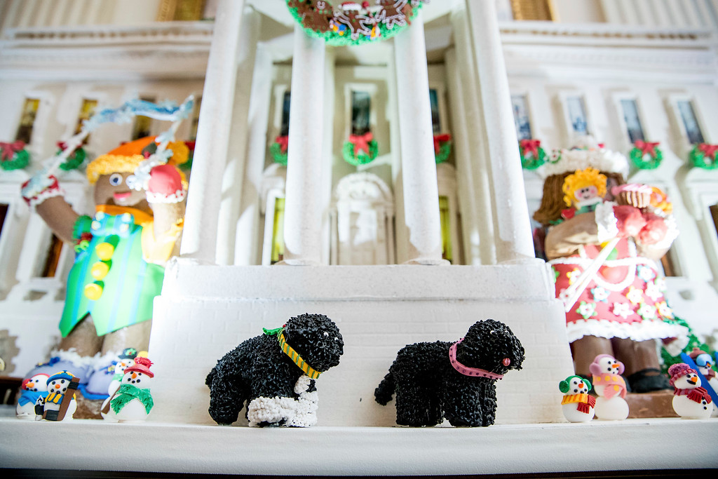 . Sunny and Bo are displayed as part of this year\'s White House Gingerbread House in the State Dining Room of the White House during a preview of the 2016 holiday decor at the White House, Tuesday, Nov. 29, 2016, in Washington. This year\'s gingerbread house features 150 pounds of gingerbread on the inside, 100 pounds of bread dough on the outside frame, 20 pounds of gum paste, 20 pounds of icing, and 20 pounds of sculpted sugar pieces. (AP Photo/Andrew Harnik)