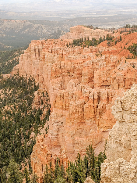 2019 Grand Canyon-442.jpg