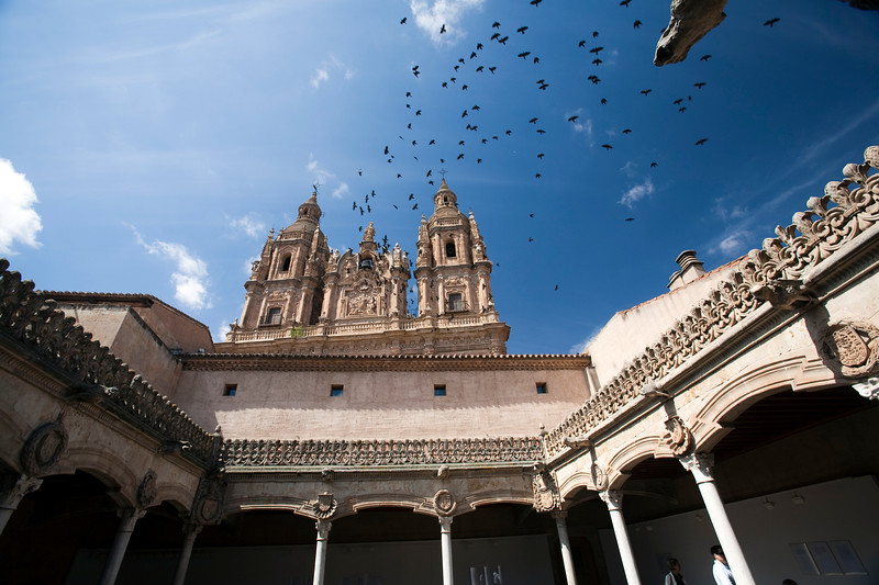 The House of the Shells gothic cloister and the baroque facade of Clergy church on the background, town of Salamanca, autonomous community of Castilla and Leon, Spain