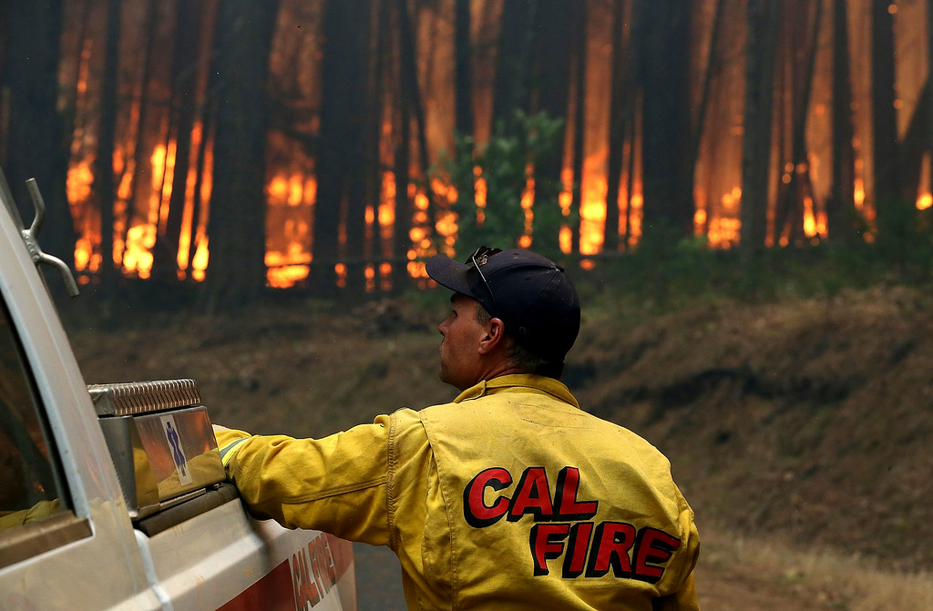 . A Cal Fire firefighter looks on as the Rim Fire burns through a grove of trees on August 25, 2013 near Groveland, California. The Rim Fire continues to burn out of control and threatens 4,500 homes outside of Yosemite National Park. Over 2,000 firefighters are battling the blaze that has entered a section of Yosemite National Park and is currently 7 percent contained.  (Photo by Justin Sullivan/Getty Images)