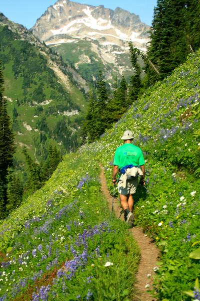 High Pass trail through the flowers.