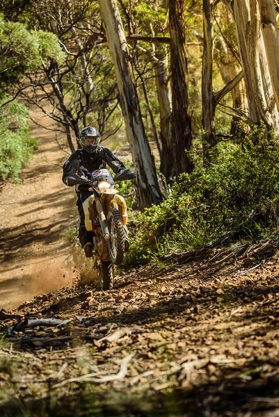 2019 KTM Australia Adventure Rallye (570).jpg