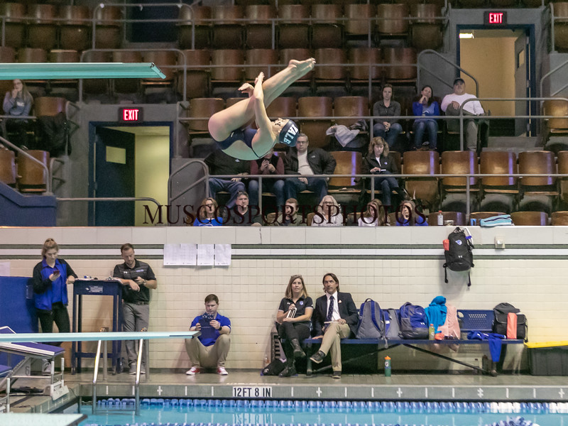Swimming-diving vs Seton Hall_1297.jpg