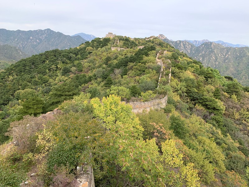 Unrestored part of Great Wall with path blocked by plants