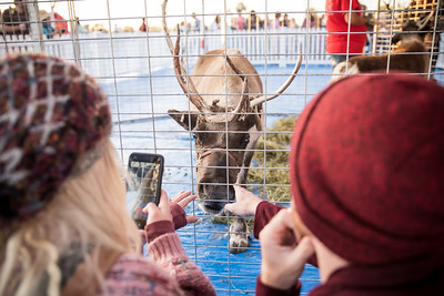 Fifth Annual Tree Lighting Celebration at Outlets at San Clemente