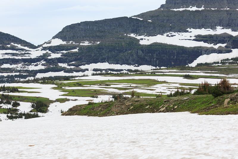 2014_07_15 Glacier National Park 032.jpg