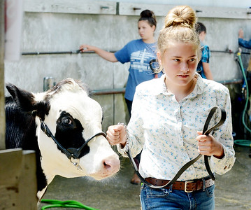 Ashtabula County Fair Prep and First Day