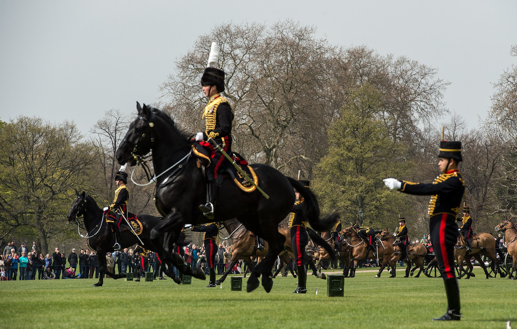. Horses charge into position with gun carriages for a 41 gun royal salute to mark the 90th birthday of Queen Elizabeth II at Hyde Park on April 21, 2016 in London, England. 71 horses pulled six First World War-era 13-pounder field guns into place at Hyde Park to fire forty one blank shots. The soldiers, horses and guns are from The King\'s Troop Royal Horse Artillery who rode out from their forward mounting base in Wellington Barracks and are commanded by Major Robert Skeggs.  (Photo by Chris Ratcliffe/Getty Images)