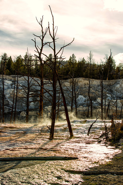 Yellowstone_May_2014_IG3A0395-2.jpg