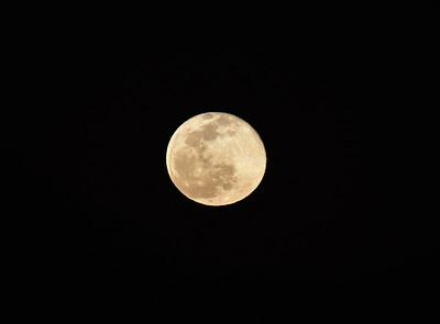 02-21 Full Moon