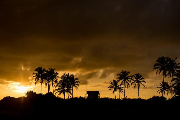 India | Goa daily