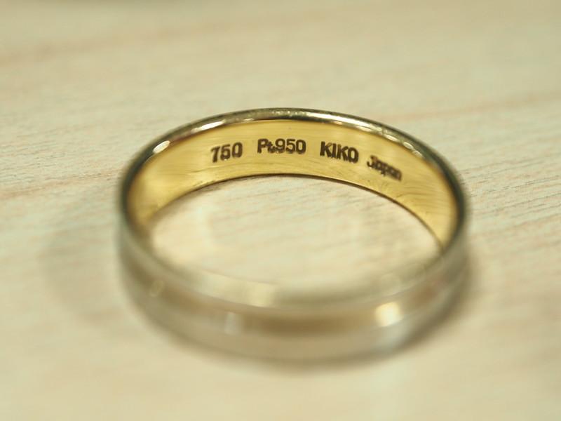 P5030061-2.JPG