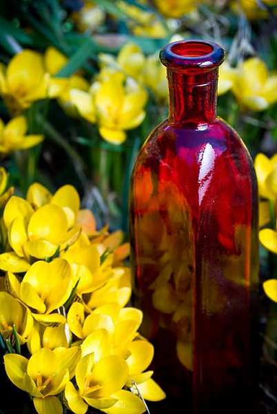 spring_tonic_15_20141019_1887292389.jpg