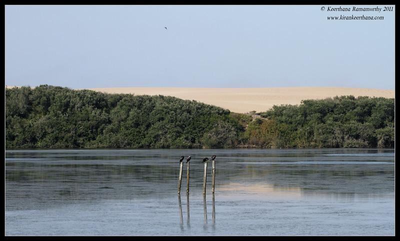 San dunes at Oso Flaco Lake, Pismo Beach, California, July 2011
