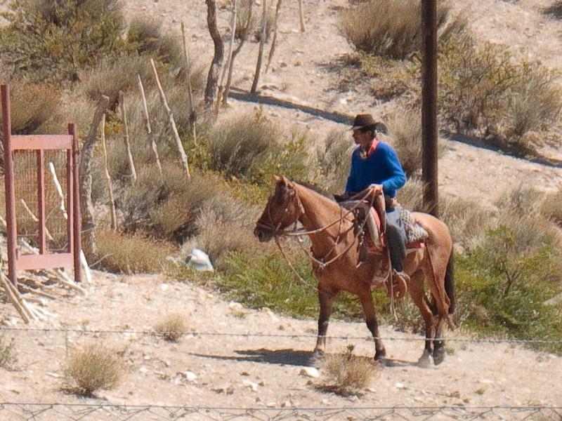 Argentinian Gaucho