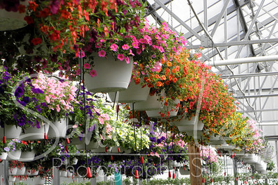 Christians' Renolda Greenhouse and Garden Center, Harbor Springs