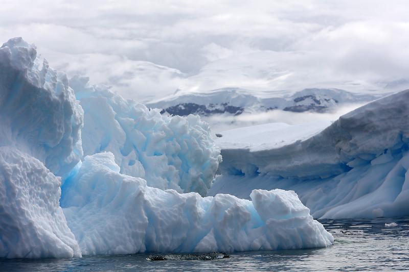 Antarctica_43.JPG