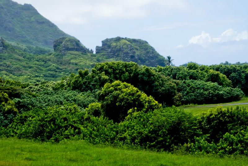 Journey into Oahu Photograph 89