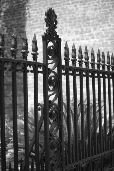IMG_2251iron fence.jpg