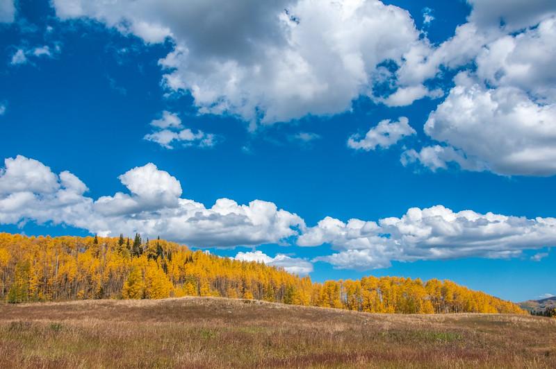 Flat Tops Trail, Colorado. Meeker to Yampa.