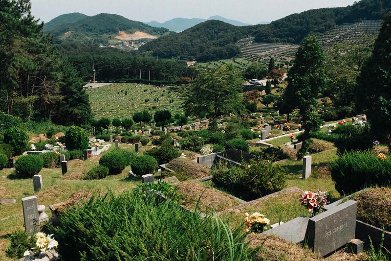 Korea_Insta-267.jpg