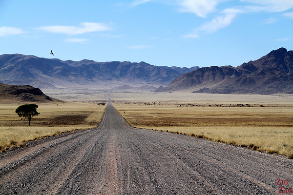 Best photo Namibia: Straight stretch of road