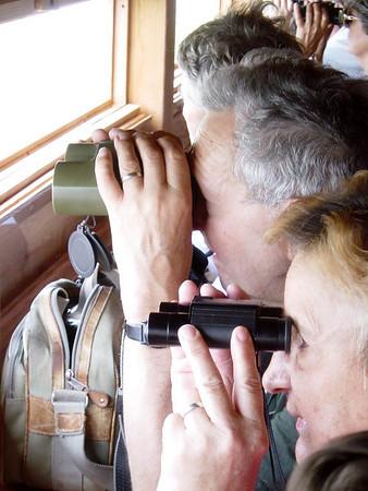 Brenne - Observation