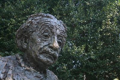 Einstein Statute