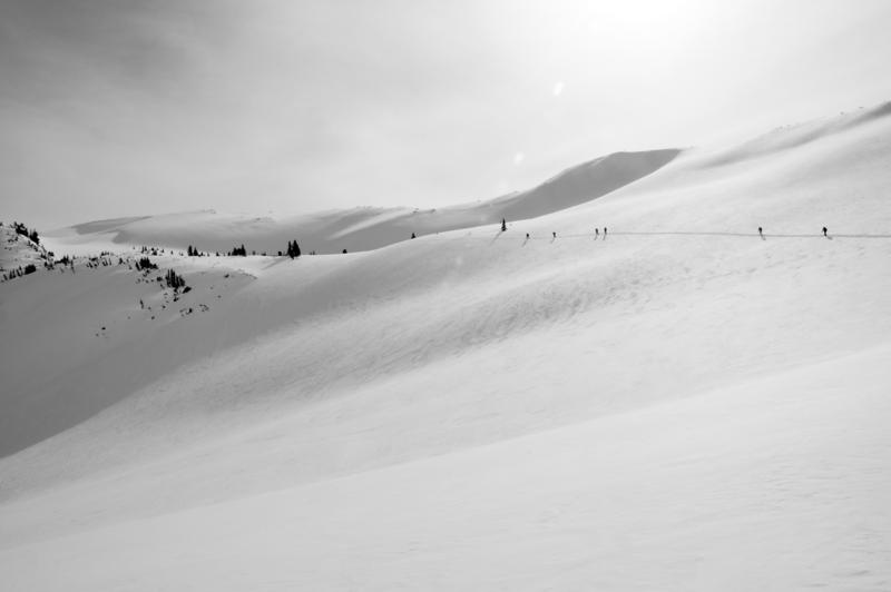 White Cap Alpine - 03-1256