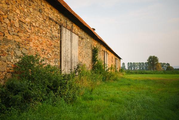 150813 Reinheimer Teich