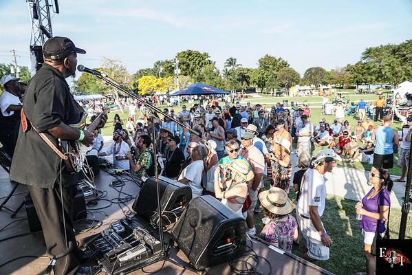Crawdebauchery Festival 2015 crowd shots 1