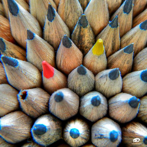 Crayons Wilo-1.jpg