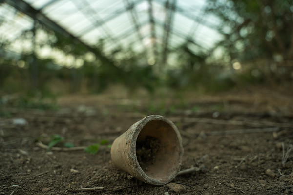 Zpustlé skleníky