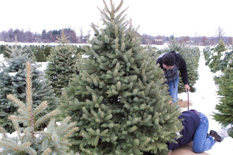 Holidays 2014-52.jpg