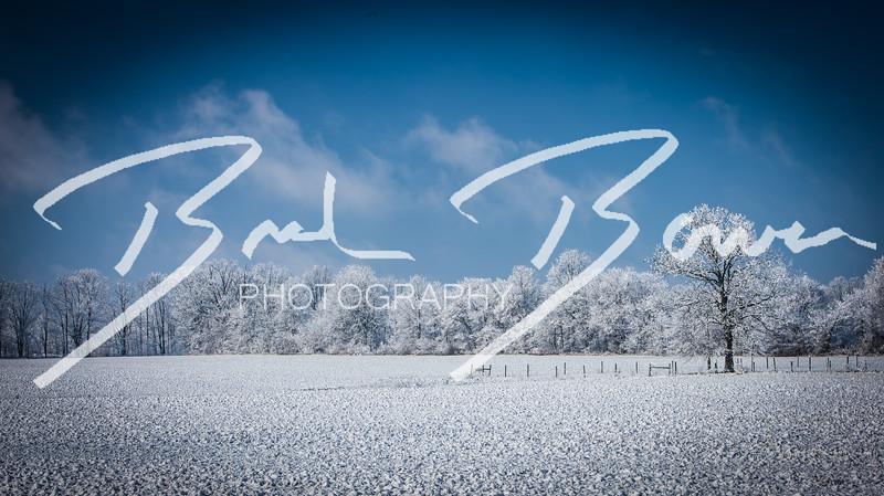 snow-97.jpg