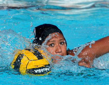 Tiger Water Polo - North Park 08/20/16