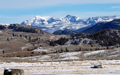 Yellowstone Visit with Bolens