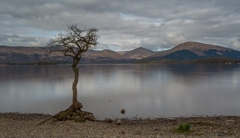 Milarrochy Bay - Loch Lomond - Stirlingshire, Scotland (April 2018)