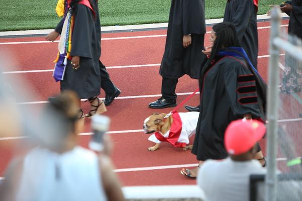 Cobi's Graduation