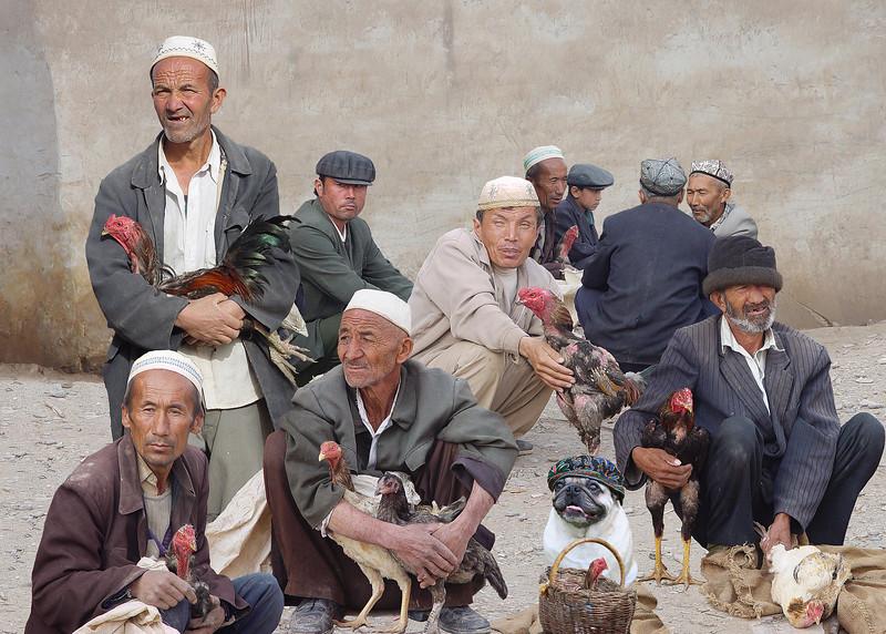COCKFIGHT - KASHGAR, CHINA