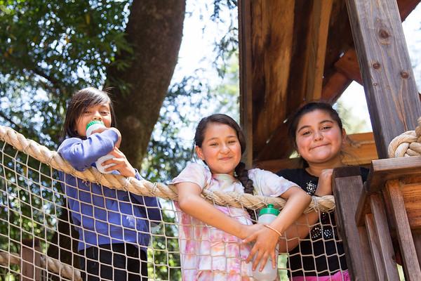 2015 Redwood Camp Week 6 - July 19–25