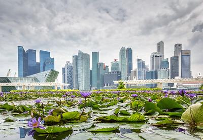 2018_Singapore-2108-Edit