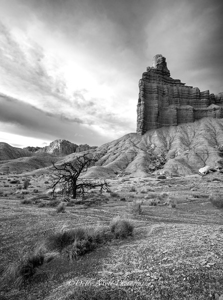 Capitol Reef National Park and Valley of the Gnomes