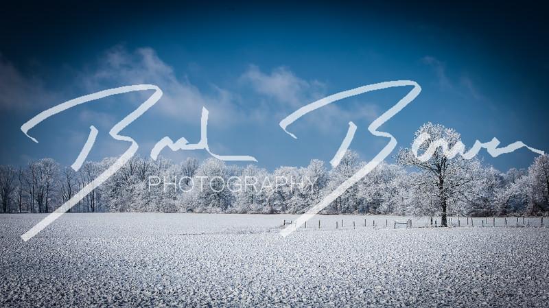snow-98.jpg