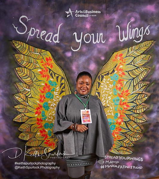 DS905007 MAMP2019-Wings.jpg