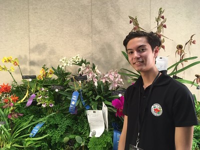 WNC Orchid Society Festival