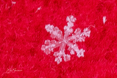 snowflakes-2745.jpg