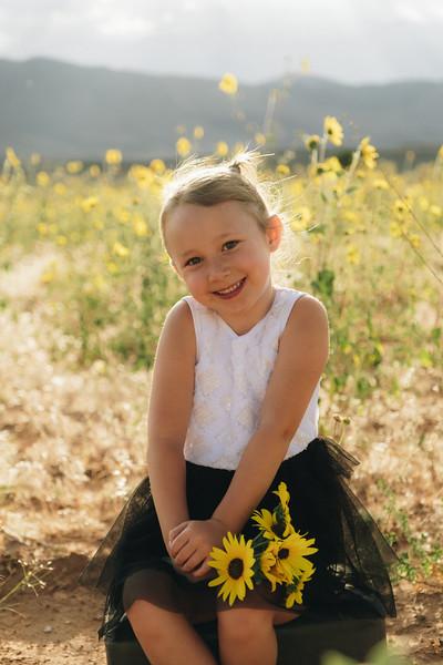 Emery Sunflowers