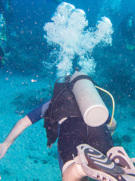 Tulum Trip - Diving 20130405-17-36 _405261804.jpg